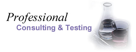 Professional Consulting and Testing
